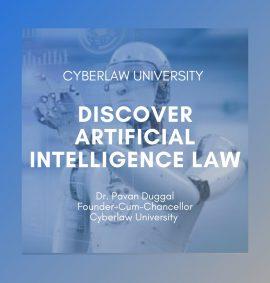 Discover AI law