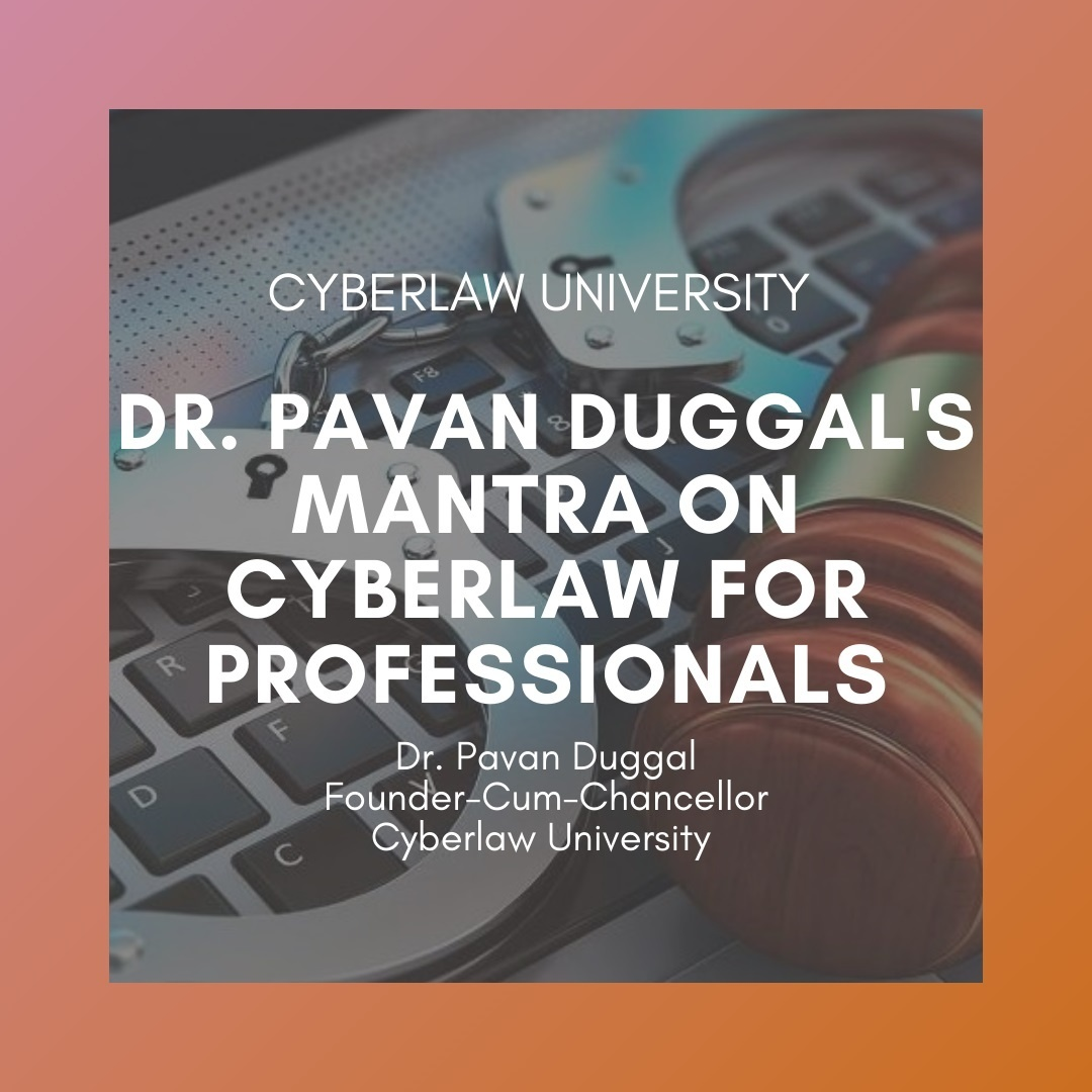 cyberlaw mantra for professional