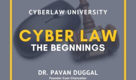 cyberlaw the begining