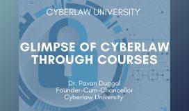 cyberlaw glimpse